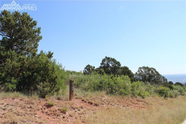 3625 Outback Vista Point, Colorado Springs, CO 80904 (#5872940) :: Jason Daniels & Associates at RE/MAX Millennium