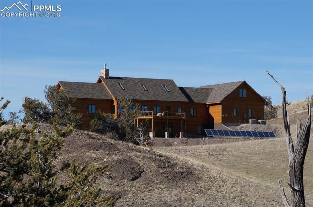 5500 Uxta Trail, Hartsel, CO 80449 (#5899108) :: 8z Real Estate
