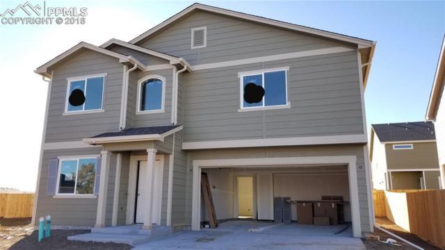 7423 Thorn Brush Way, Colorado Springs, CO 80923 (#5901920) :: 8z Real Estate