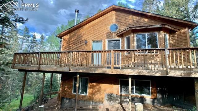 331 Donzi Trail, Florissant, CO 80816 (#5906808) :: CC Signature Group