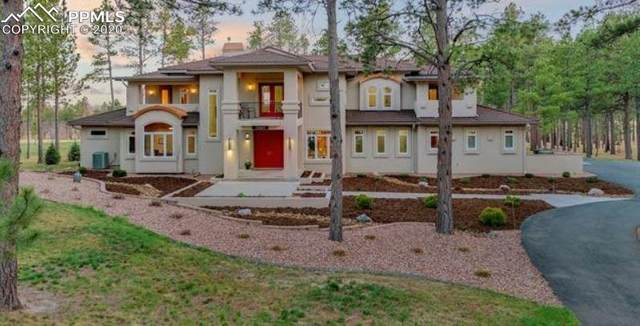 10957 Silver Mountain Point, Colorado Springs, CO 80908 (#5926426) :: The Harling Team @ Homesmart Realty Group