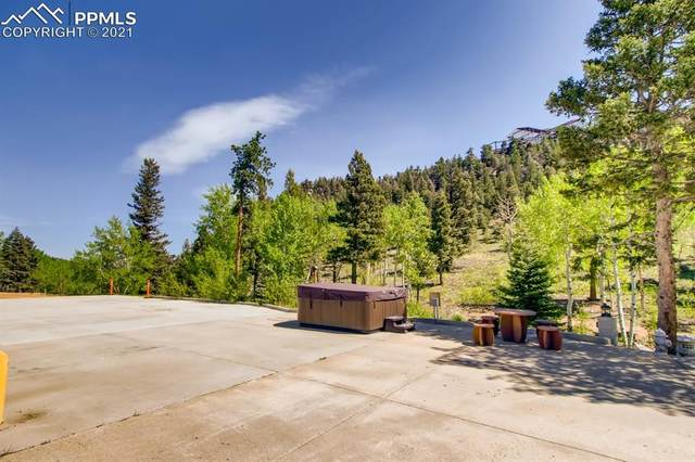 515 Old Mans Camp Trail, Manitou Springs, CO 80829 (#5928060) :: Action Team Realty
