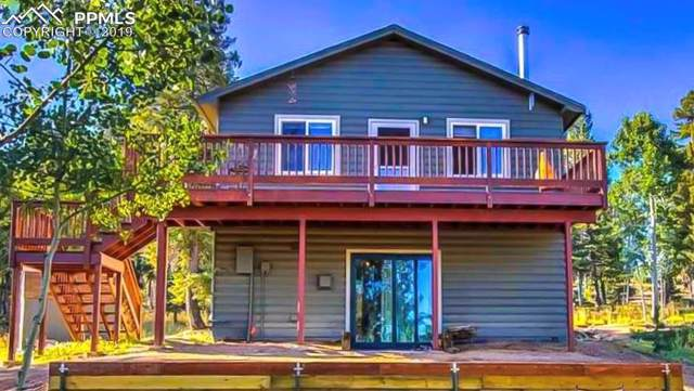 43 Mount Elbert Road, Florissant, CO 80816 (#5935788) :: CC Signature Group