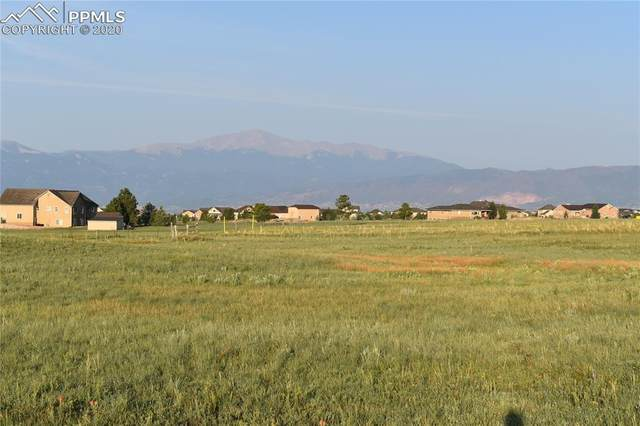 7871 Bannockburn Trail, Colorado Springs, CO 80908 (#5936134) :: Tommy Daly Home Team