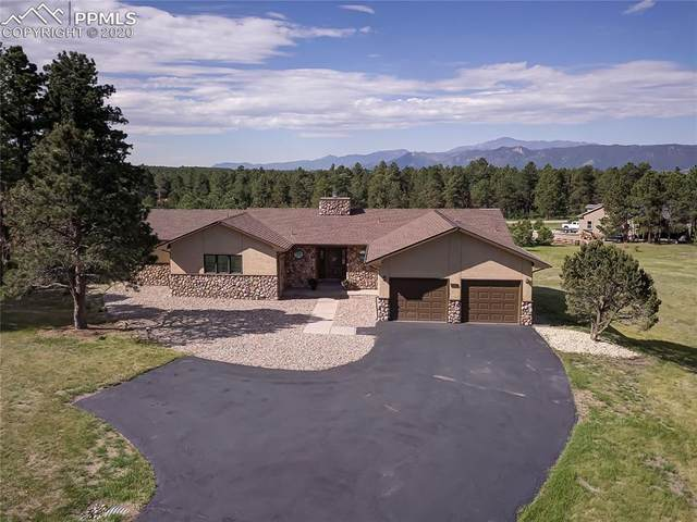 315 E Stirrup Trail, Monument, CO 80132 (#5951589) :: Tommy Daly Home Team