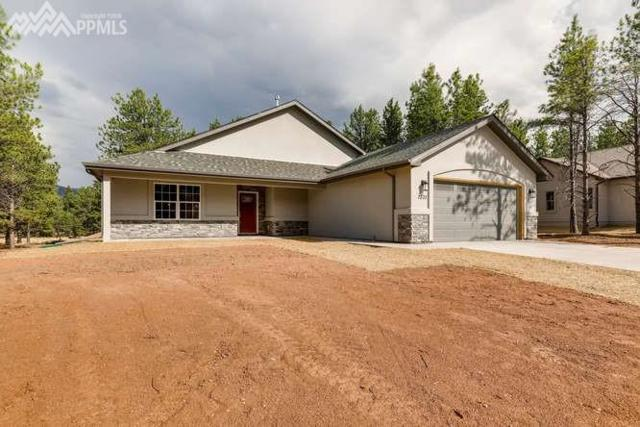1331 Firestone Drive, Woodland Park, CO 80863 (#5968267) :: 8z Real Estate