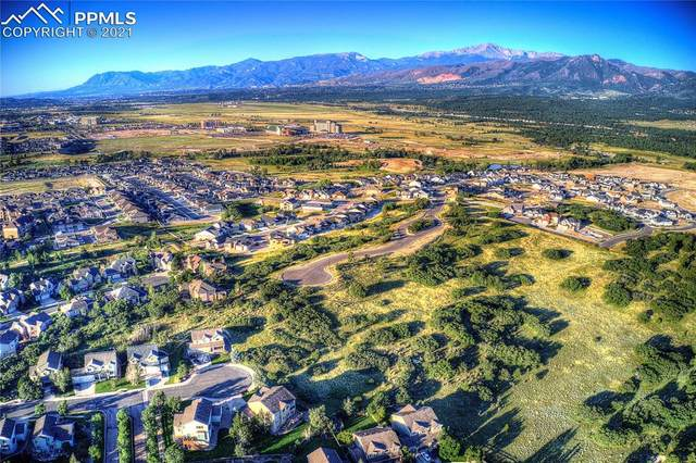 1295 Kelso Place, Colorado Springs, CO 80921 (#5980931) :: The Kibler Group