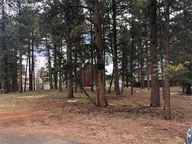 L46 Rancho Camino, Woodland Park, CO 80863 (#5992182) :: Fisk Team, RE/MAX Properties, Inc.