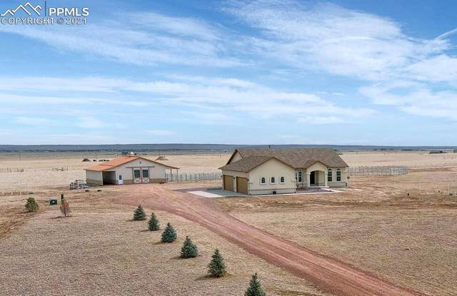 18311 Good Life View, Calhan, CO 80808 (#5992715) :: CC Signature Group