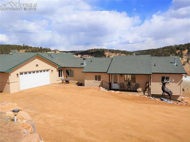 586 Maroon Lake Circle, Divide, CO 80814 (#6039977) :: Perfect Properties powered by HomeTrackR