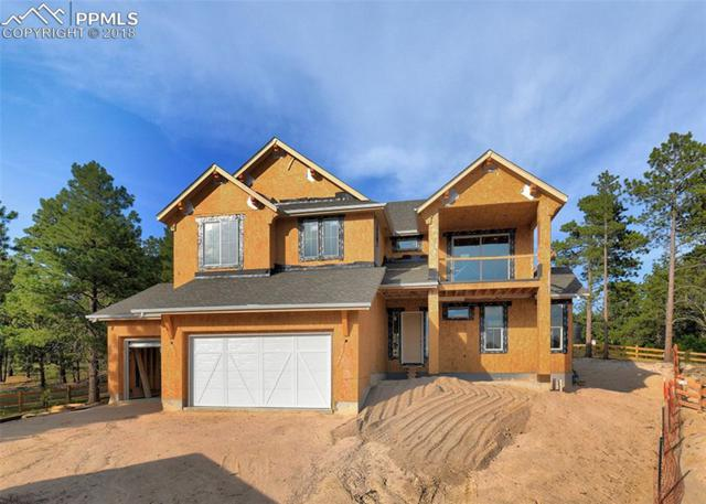 16489 E Clandestine Court, Monument, CO 80132 (#6040109) :: Jason Daniels & Associates at RE/MAX Millennium