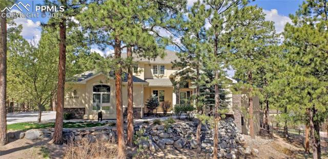 15912 Wildhaven Lane, Colorado Springs, CO 80921 (#6041596) :: CC Signature Group