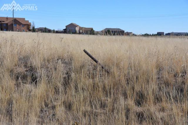 Bahama Drive, Black Forest, CO 80908 (#6116338) :: Colorado Home Finder Realty