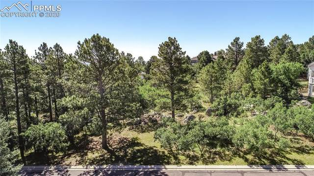 4635 Bradford Heights, Colorado Springs, CO 80906 (#6200174) :: Tommy Daly Home Team
