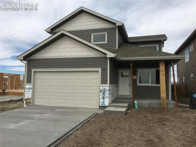 6596 Gelbvieh Road, Peyton, CO 80831 (#6276465) :: Perfect Properties powered by HomeTrackR