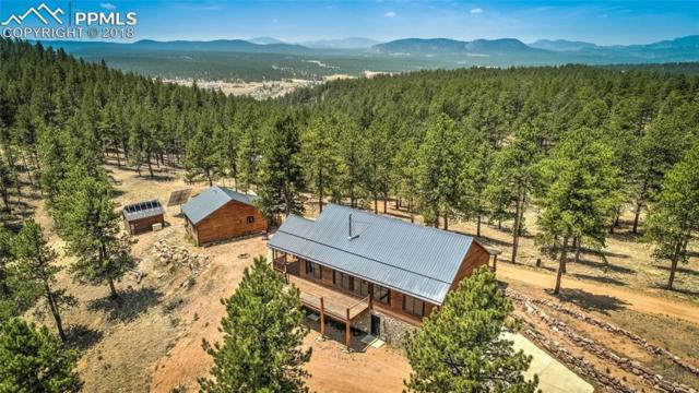 4573 W Highway 24, Florissant, CO 80816 (#6297195) :: 8z Real Estate