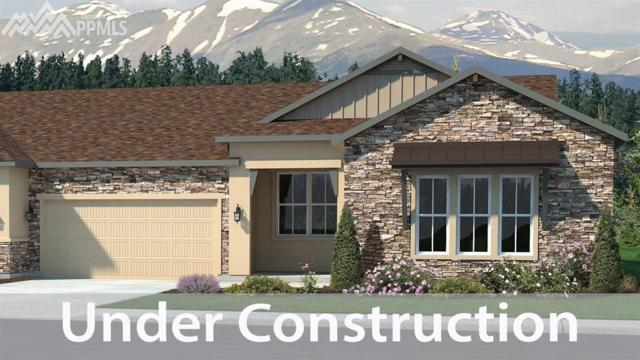 16351 Woodward Terrace, Monument, CO 80132 (#6343749) :: 8z Real Estate