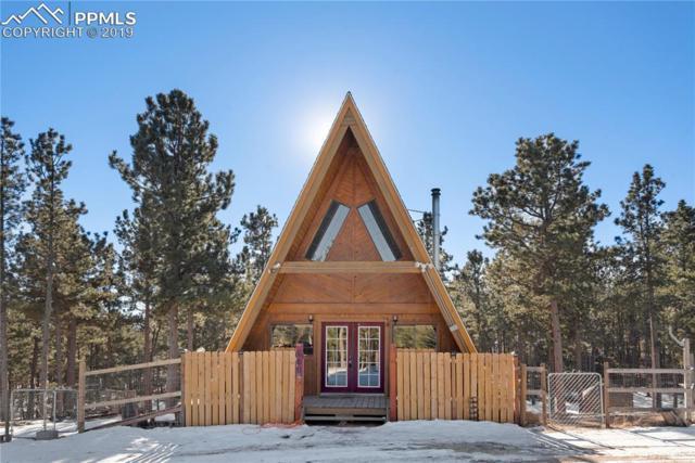 600 Matterhorn Drive, Florissant, CO 80816 (#6351748) :: 8z Real Estate