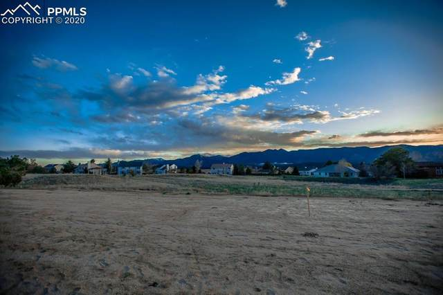 14149 Stone Eagle Place, Colorado Springs, CO 80921 (#6399497) :: Fisk Team, RE/MAX Properties, Inc.