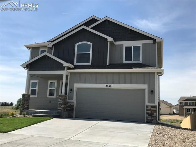 7911 Ainsley Park Place, Colorado Springs, CO 80927 (#6403371) :: Jason Daniels & Associates at RE/MAX Millennium