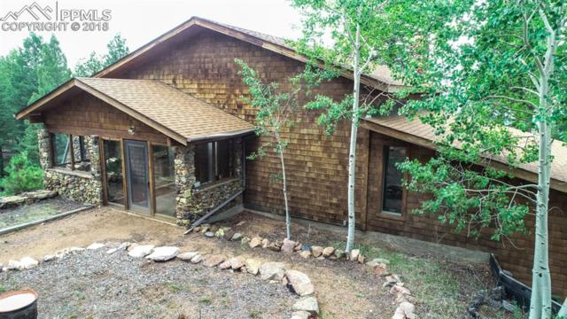276 Blue Spruce Trail, Woodland Park, CO 80863 (#6414330) :: Action Team Realty