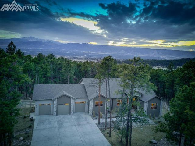 14860 Roller Coaster Road, Colorado Springs, CO 80921 (#6436626) :: The Treasure Davis Team