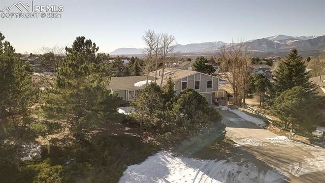 415 Wuthering Heights, Colorado Springs, CO 80921 (#6466523) :: Finch & Gable Real Estate Co.