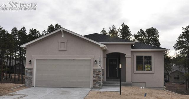 16393 Corkbark Terrace, Monument, CO 80132 (#6507512) :: Tommy Daly Home Team
