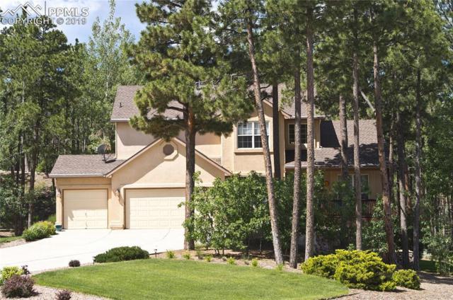 15954 Backwoods Court, Colorado Springs, CO 80921 (#6515215) :: 8z Real Estate