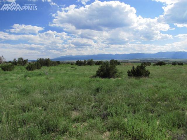 1133 Top Notch Trail, Penrose, CO 81240 (#6658325) :: Jason Daniels & Associates at RE/MAX Millennium