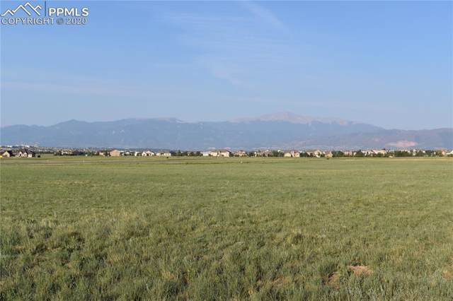 7834 Rannoch Moor Way, Colorado Springs, CO 80908 (#6757786) :: 8z Real Estate