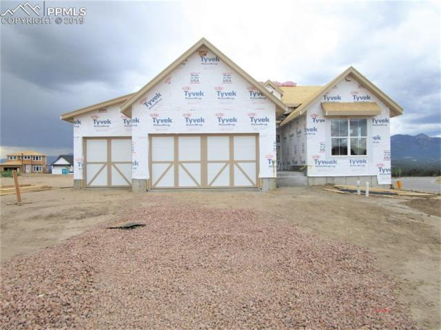 1007 Barbaro Terrace, Colorado Springs, CO 80921 (#6768204) :: Fisk Team, RE/MAX Properties, Inc.