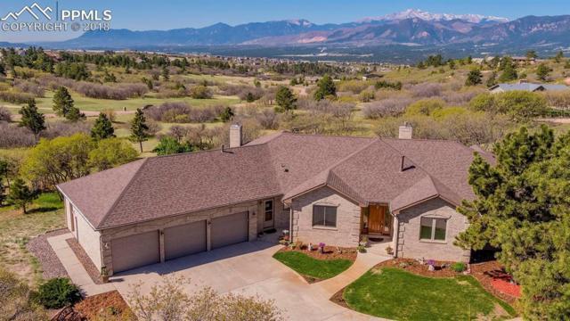 14560 Sun Hills Drive, Colorado Springs, CO 80921 (#6782809) :: Action Team Realty