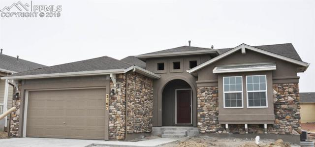 3107 Golden Meadow Way, Colorado Springs, CO 80908 (#6794598) :: Compass Colorado Realty