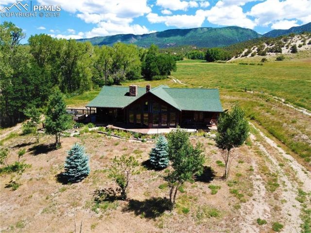 570 County 628 Road, Gardner, CO 81040 (#6795227) :: Action Team Realty