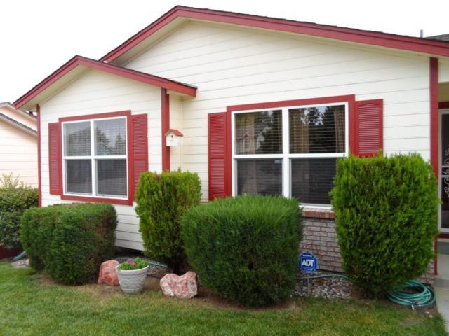 1175 Modell Drive, Colorado Springs, CO 80911 (#6804364) :: 8z Real Estate