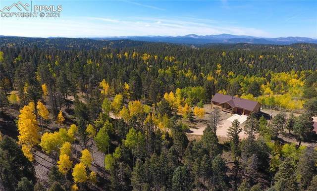 4269 County Road 51 Road, Divide, CO 80814 (#6829193) :: Tommy Daly Home Team