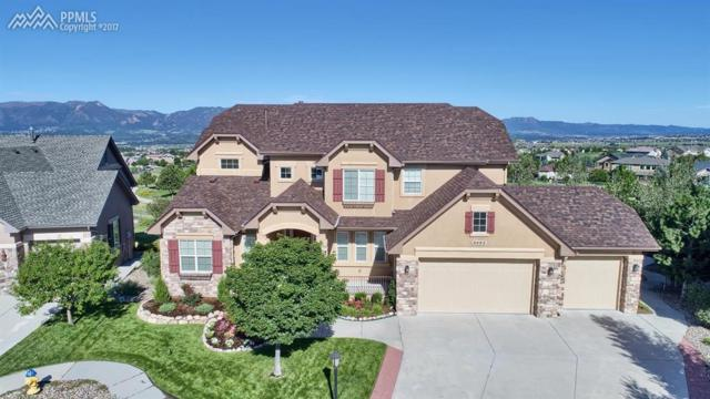 9952 Oak Knoll Terrace, Colorado Springs, CO 80920 (#6833764) :: Jason Daniels & Associates at RE/MAX Millennium