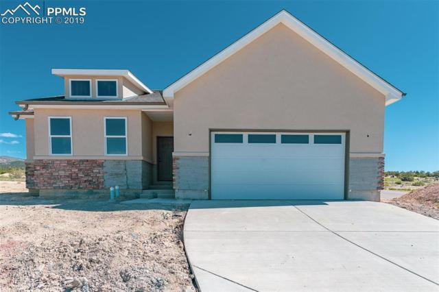 3571 Telegraph Trail, Canon City, CO 81212 (#6835431) :: Action Team Realty