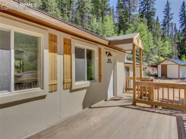 4020 Trout Creek Road, Woodland Park, CO 80863 (#6892110) :: Harling Real Estate