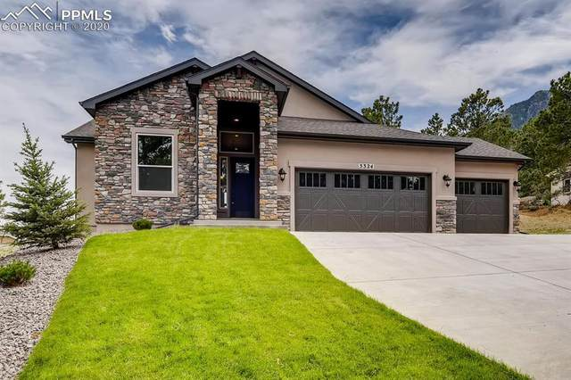 5324 Old Star Ranch View, Colorado Springs, CO 80906 (#6911216) :: CC Signature Group