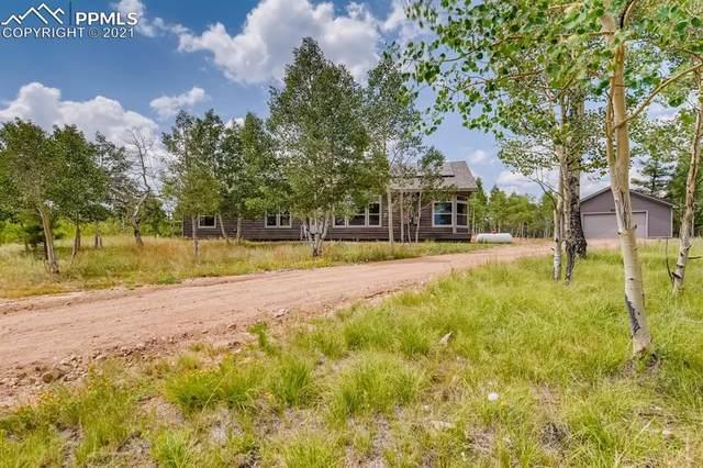 151 Aspen Way Drive, Florissant, CO 80816 (#7013637) :: 8z Real Estate