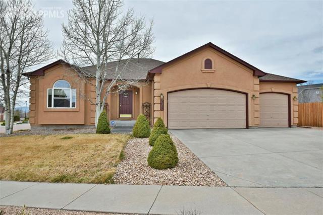 7355 Salish Boulevard, Colorado Springs, CO 80923 (#7030725) :: 8z Real Estate