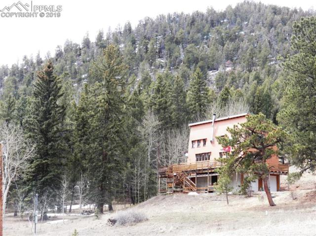98 Andes Road, Cripple Creek, CO 80813 (#7097218) :: Action Team Realty