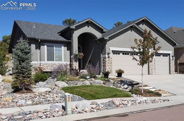 205 Coyote Willow Drive, Colorado Springs, CO 80921 (#7173420) :: 8z Real Estate