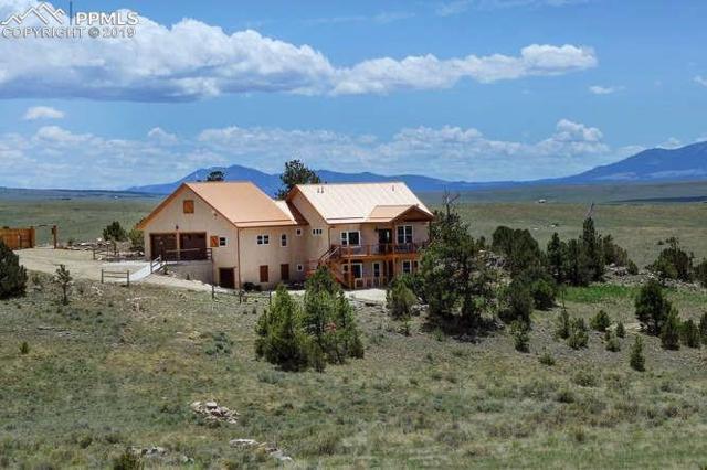 393 Navajo Road, Westcliffe, CO 81252 (#7380433) :: Fisk Team, RE/MAX Properties, Inc.