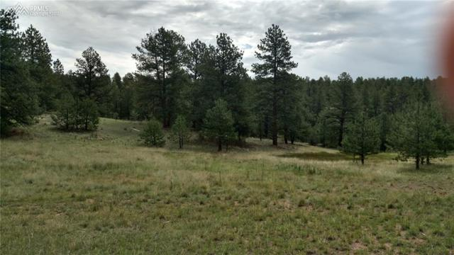808 Timber Mesa ., Florissant, CO 80816 (#742443) :: 8z Real Estate