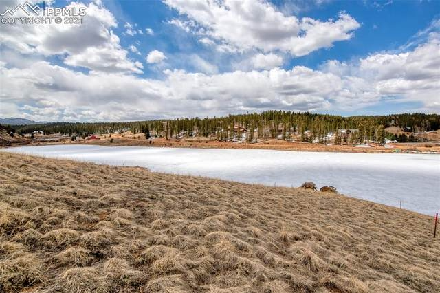 TBD Spring Valley Circle, Divide, CO 80814 (#7509200) :: CC Signature Group
