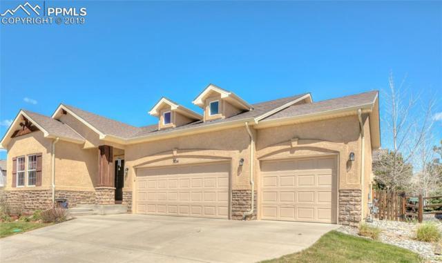 804 Fire Rock Place, Colorado Springs, CO 80921 (#7512742) :: Venterra Real Estate LLC