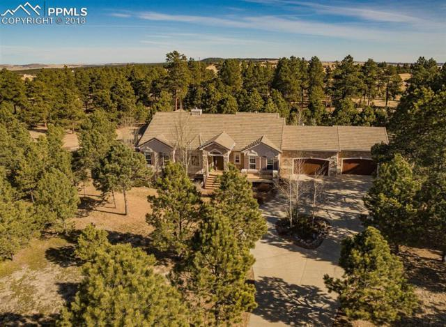 4502 Mountain Dance Drive, Colorado Springs, CO 80908 (#7562598) :: Jason Daniels & Associates at RE/MAX Millennium